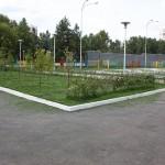 Озеленение детского сада
