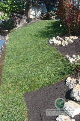 Частное озеленение: газоны