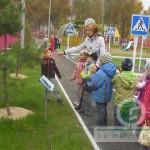 Дендрарий в детском саду